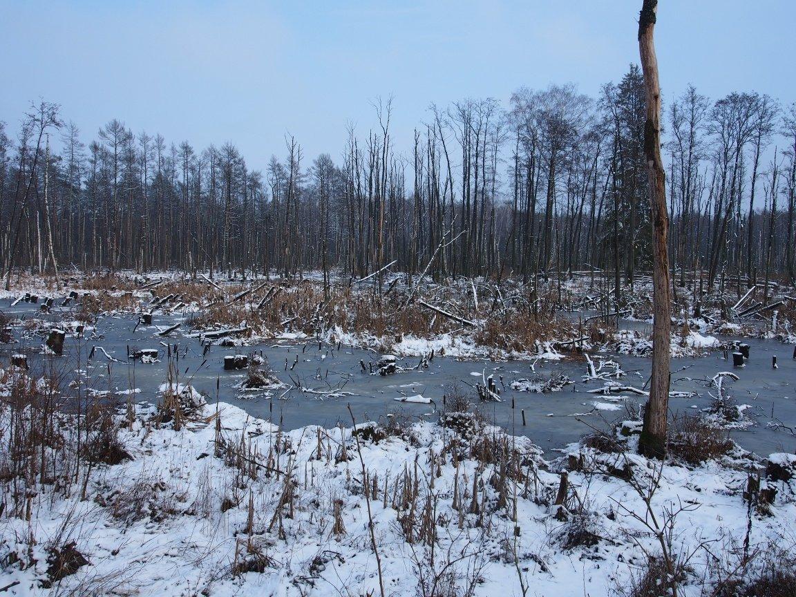 Nasz biegun zimna | Mazury